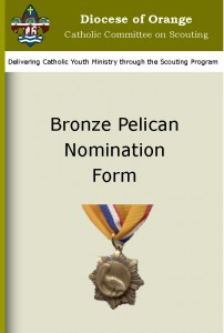 Bronze-Pelican Cover